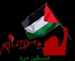 شات عربي, شات فلسطيني